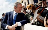 Facts About George W Bush 39 Free Wallpaper